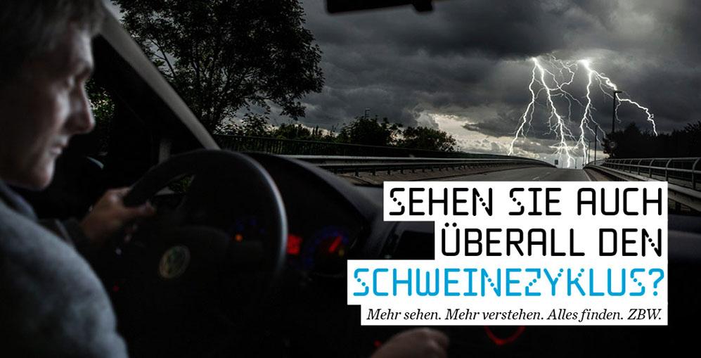 mediatalk-blog-imagekampagne-schweinekurve-997x509